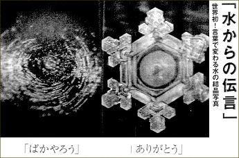 「水からの伝言」の画像検索結果
